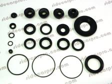 cj750 cjang jiang750 oil seal kit