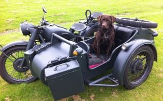 military themed CJ sidecar dog ohv cj 750 photo
