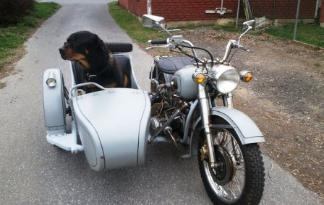 cj750 sidecar dog side car chang jiang750 cj 750 photos hound wing mut
